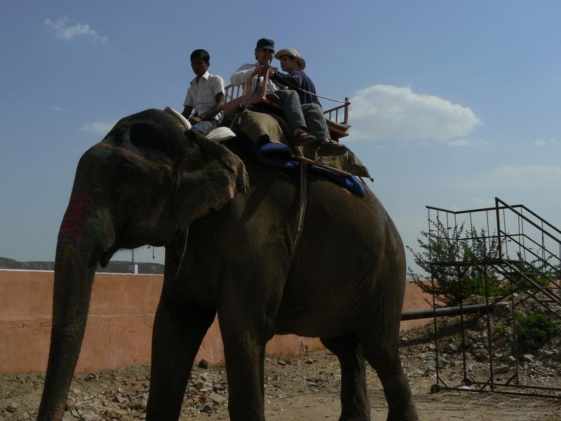 Gab et Dom à dos d'éléphant