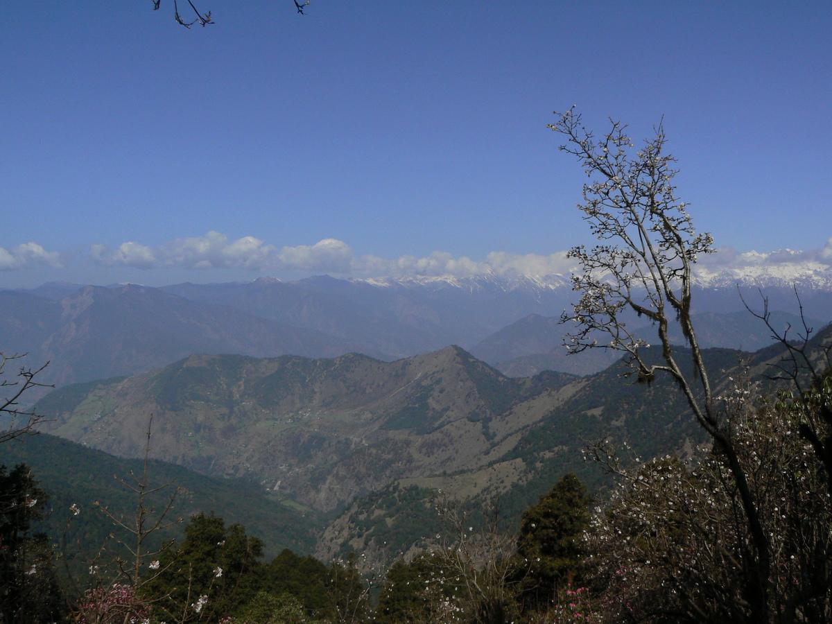 Vue sur les montagnes alentour (2)