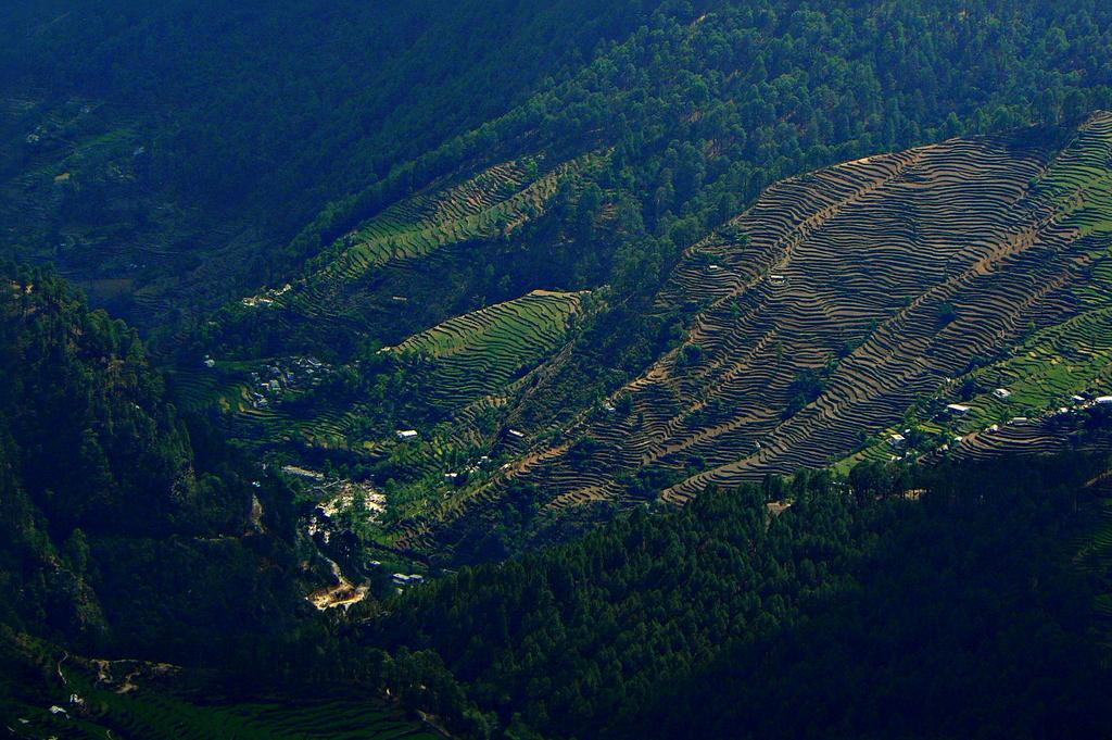 Vallée vue du sommet
